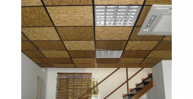El falso techo de las oficinas es un lugar que les encanta las cucarachas