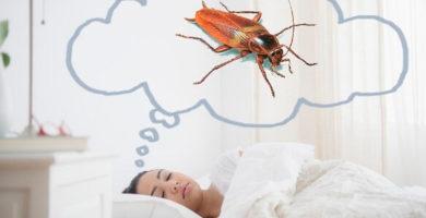 Chica soñando con cucarachas