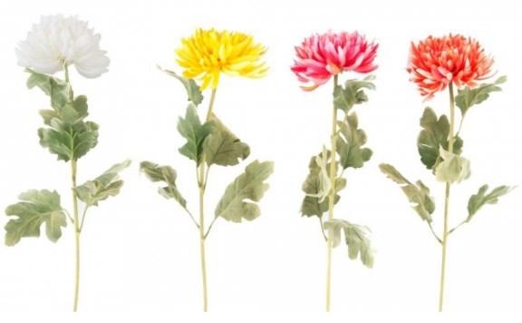 Los crisantemos son una especie de plantas que ahuyentan las cucarachas